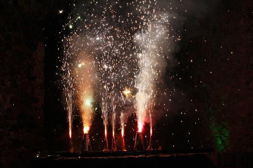 Feuerwerk 2010 web